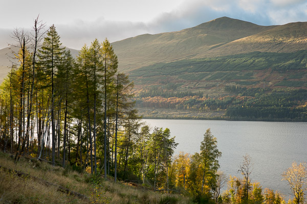 autumnal_loch_view.jpg
