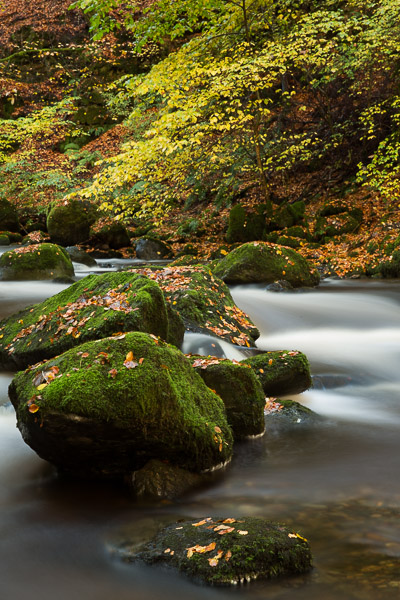 autumnal_river_2.jpg