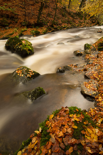 autumnal_river_3.jpg