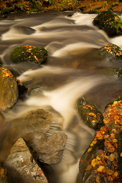 autumnal_river_4.jpg