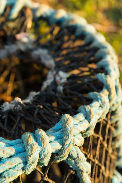 lobster_pots__priest_s_cove-3.jpg