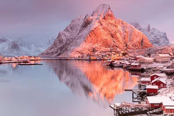 _reine_pink_dawn_light.jpg