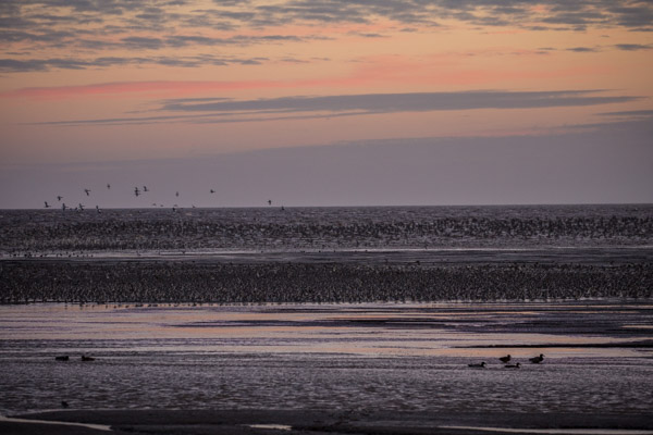 last_light_at_snettisham-5.jpg