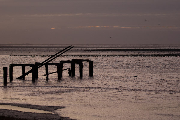 last_light_at_snettisham-9.jpg